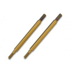 Shaft, GTR shock TiN-coated (2)