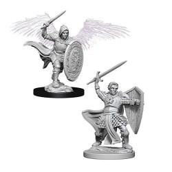 D&D Nolzurs Marvelous Miniatures - Aasimar Male Paladin