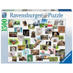 Ravensburger Puzzle - Funny Animals Collage - 1500pc