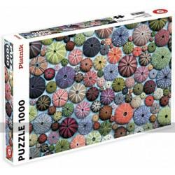 Puzzle - Sea Urchins (1000pc)