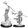 D&D Nolzurs Marvelous Miniatures - Human Druid Famale